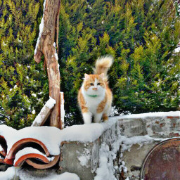 freetoedit animals petsandanimals cats snow