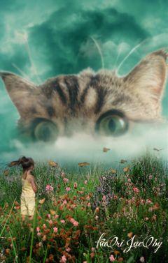 space kitty cute cat freetoedited freetoedit