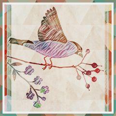 freetoedit bird remixed