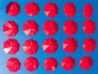 dpcumbrella