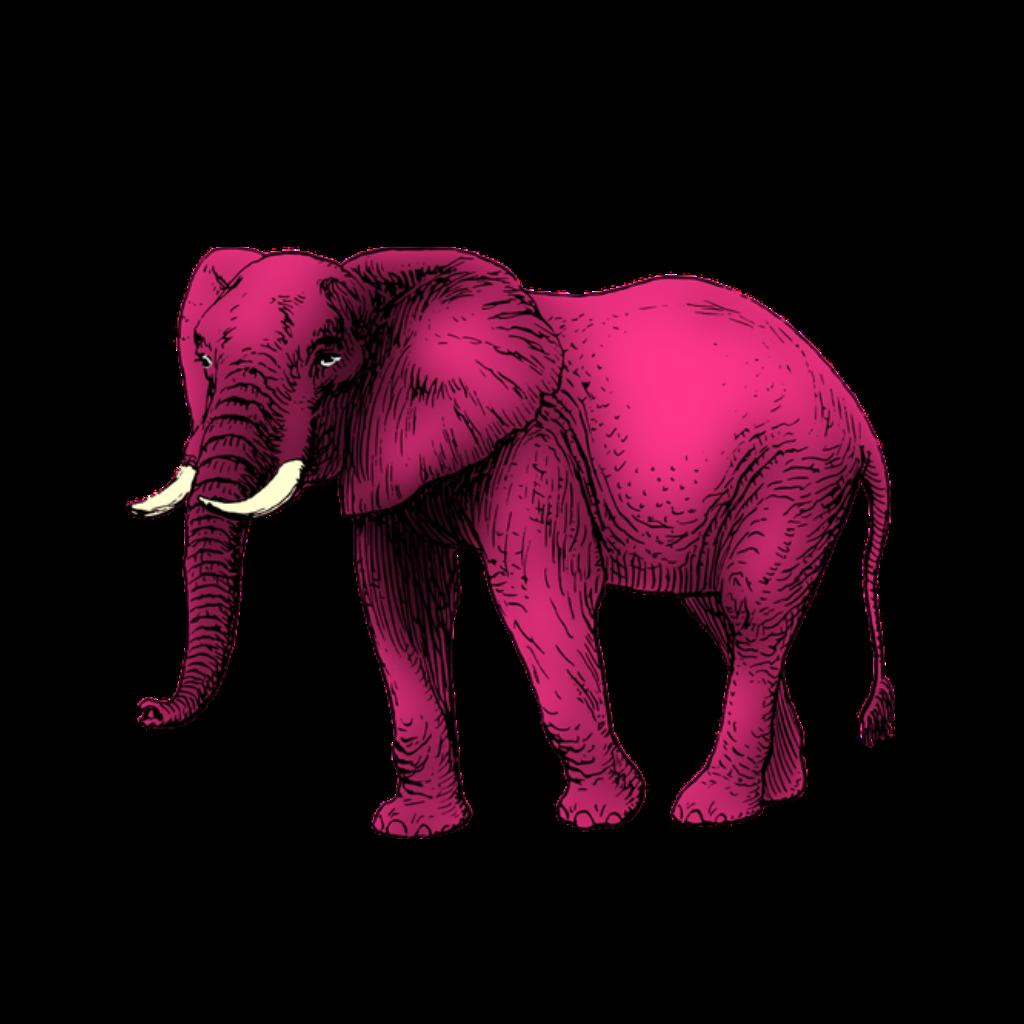 #FreeToEdit #fte #ftestickers #pink #elephant