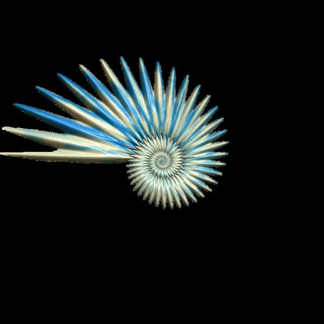 #seashell
