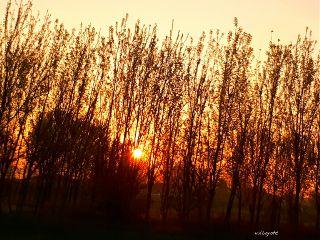 nature sunrises emotions naturephoto